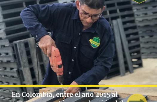 Cónocenos - Empresa Verde en pro de la sostenibilidad y el cuidado medio ambiental.